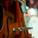 Officina19 - Ladispoli vintage - BB & Red Cats 15